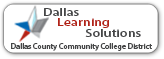 Dallas Learning Solution Logo