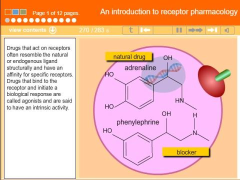 An Introduction to Receptor Pharmacology